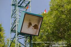 PBSV-2016-Mo-Vogelschießen-RW B4207