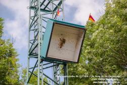 PBSV-2016-Mo-Vogelschießen-RW B4225